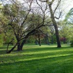 Landscape Workdays
