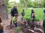 Planting the tree 2