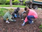 Planting the tree 5