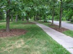 Mulched areas (3)