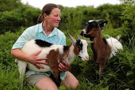 Goats Do Roam - Insights into Goats and Landscaping
