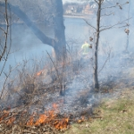 Prescribed Burn Training