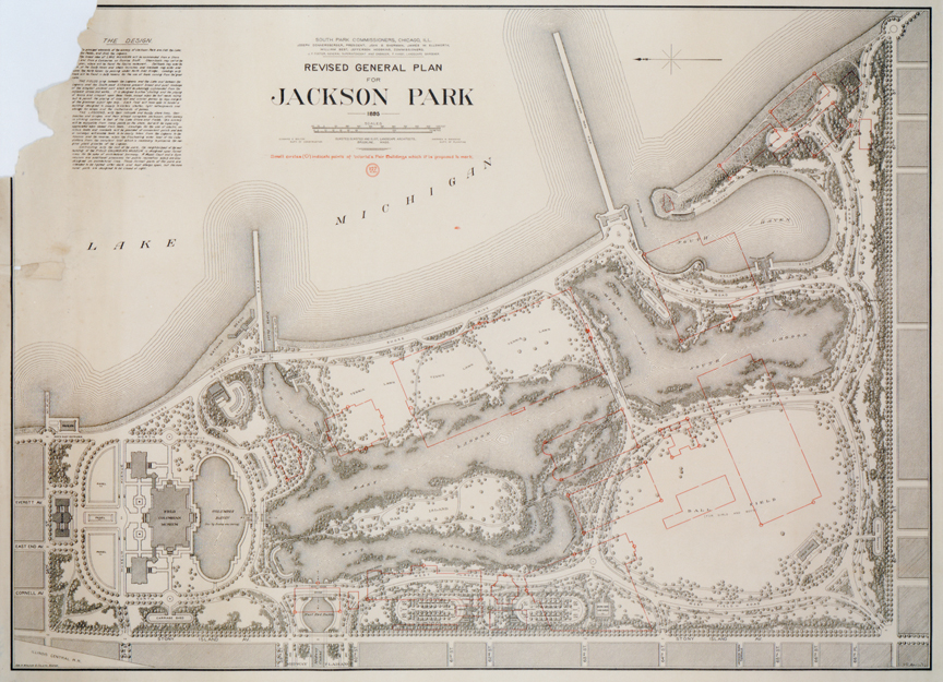 Lauren Umek - Jackson Park Restoration
