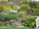 FLOS Lecture:  Rethinking Your Lawn