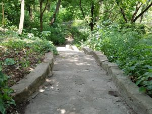 Stairway to Swan Pond, After (1)