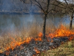 Landscape Workday:  Prescribed Burns in Riverside