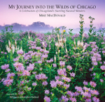 """My Journey into the Wilds of Chicago"" — Performance & Book Signing"