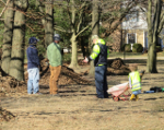 Landscape Workday:  March 8, 2020
